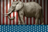 Beaver County Young Republicans Announce Endorsements For Primary Election