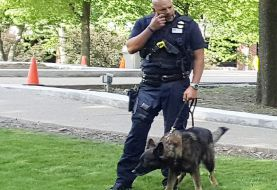 RECORDED CALL: Beaver Patrolman And County 911 Dispatcher Laugh While Discussing Man's Injuries Caused By Police K-9